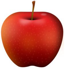 roter Apfel - Apfel, Obst, Frucht, Kernobstgewächs, Rosengewächs, rot, Anlaut A, Wörter mit pf, Illustration