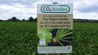 Hinweisschild zu CO2 - Rüben, CO2, Sauerstoff, freisetzen, Umweltschutz, nachhaltig, Ökologie, Klimaschutz
