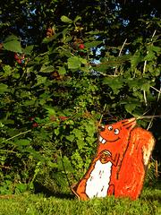Eichhörnchen - Eichhörnchen, Herbst, Nuss, Haselnuss, Brombeere, Brombeeren, Futter, Nahrungssuche, Baumhörnchen, Nagetiere, Nagetier, Kunst, Malerei, Baummalerei, Holzmalerei, Schreibanlass, Erzählanlass, Herbstgeschichte