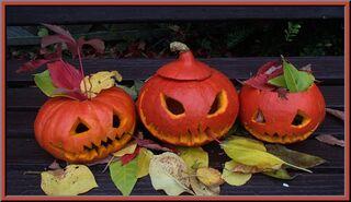 Kürbisse schnitzen - Kürbisse, Schnitzwerkzeug, Vorlagen, Herbst, Rübengeist, Brauchtum, Herbstdekoration