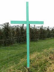 Aktion Grüne Kreuze - grüne Kreuze, Aktion, Protestaktion, deutsche Landwirte, stiller Protest, Respekt der Arbeit, Mahnzeichen, Kritik, Agrarumweltpaket, Politik