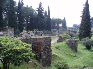 Pompeji - Vegetation - Ruine, Bäume, Italien, Pompeji, Antike, alt, Vesuv, Römer, Straße, Straßenzug, Hang, Häuser, Stadt