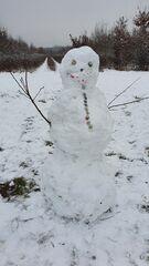 Schneemann mit Maske - Winter, Schnee, kalt, Schneemann, bauen, Schneekugel, Schneefigur, lächeln, Eis, Jahreszeit, Winterfreuden, Figur, schneebedeckt