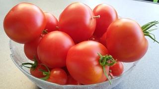 Tomaten - Tomaten, Gemüse, Paradeiser, Nachtschattengewächs, rot, reif