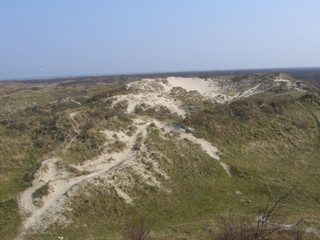 große Düne - Wattenmeer, Nordsee, Küste, Insel, Sand, Düne, Bewuchs