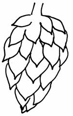 Hopfendolde - Hopfen, Anlaut H, Bier, Hopfengarten, Hopfenanbau, Brauerei, Heilpflanze, Hanfgewächs