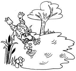 Teich mit Kröte - Teich, Kröte, Kindergeschichte, Illustration, Wörter mit ö, See, Tümpel, Wörter mit T, Wörter mit Ei, Wörter mit ch, Wörter mit ö, Biotop, Stillgewässer