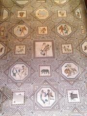 Dionysosmosaik Köln #1 - Mosaik, Römer, römisch, Antik, Medaillons, Dionysos, Jahreszeiten, Früchte, Tiere, Fußboden