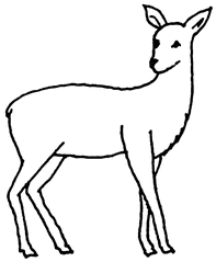 Reh (1) - Reh, Wild, Bambi, Anlaut R, Wörter mit h