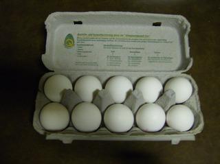 Eier in der Verpackung - Eier, Ei, Verpackung, Eierkarton, Eierschachtel, zehn, weiß, Nahrungsmittel, Vogelei, Hühnerei