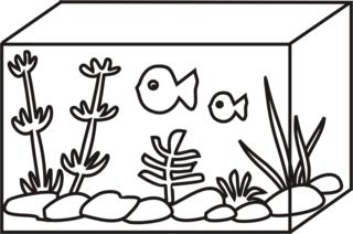 Aquarium - Aquarium, Fische, Wasserbecken, Wasserpflanzen, Anlaut A