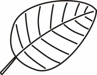 Blatt - Blatt, Blätter, Pflanzen, Pflanzenteile, Herbst, Baum, Anlaut B, Wörter mit ä