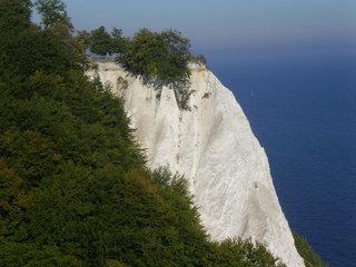 Kreidefelsen - Rügen, Kreidefelsen, Natur, Landschaft, Sedimentgestein, Calciumcarbonat, Geologie, Steilküste, Wald