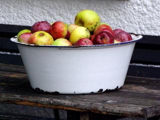 Apfelernte #3 - Apfel, Äpfel, Schüssel, viele