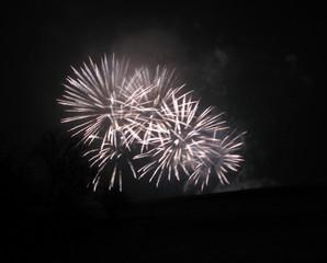 Feuerwerk 1 - Rakete, Feuerwerk, Silvester, Neujahr, Lichteffekt, Pyrotechnik, leuchten, Licht, Nacht, Himmel, schwarz, hell, leuchtend
