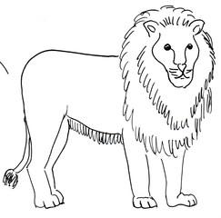 Löwe - Löwe, Afrika, Tier, Wildtier, Raubtier, Anlaut L, Wörter mit ö