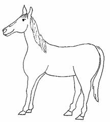 Pferd - Pferd, reiten, Nutztier, Bauernhof, Anlaut Pf, Wörter mit pf