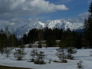Grimmingmassiv - Grimming, Gebirge, Alpen, Österreich, Bad Mitterndorf, Schnee, Winter, Wald