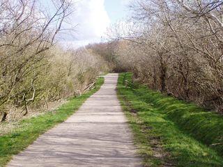 Wege#2 - Weg, Wege, Frühling, Meditation