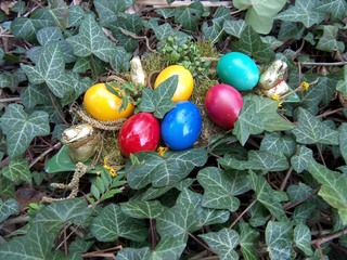 Ostern - Ostereier, Osterei, Mehrzahl, Osternest, Efeu, bunt, rot, gelb, blau, grün, Eier, sechs