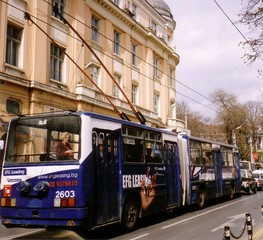 Oberleitungsbus - Oberleitungsbus, Trolleybus, Fahrzeug, Fortbewegungsmittel, Transportmittel, Bus, Straßenverkehr, fahren, Stadtverkehr, O-Bus