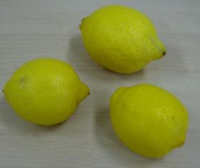 Zitrone - Zitrone, Obst, sauer, Frucht, gelb, drei Menge