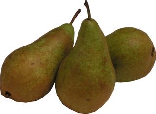 Birnen - Birne, Obst, Früchte, Frucht