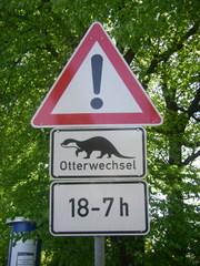 Schild: Otter - Fischotter, Lutra lutra, Säugetier, Raubtier, Hundeartige, Marderartige, Marder, Artenschutz, Wiedereinbürgerung, Hinweisschild, Naturschutz, Schild, Ökologie