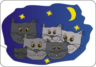 Sprichwörter -  bildlich dargestellt - Sprichwort, Redewendung, Umgangssprache, Bild, bildlich, nachts, Katzen, grau