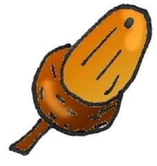 Eichel - Pflanze, Baum, Eiche, Eichel, Frucht, braun, Anlaut Ei