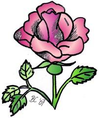 Rose - Pflanze, Blume, Rose, rosa, Anlaut R, Illustration