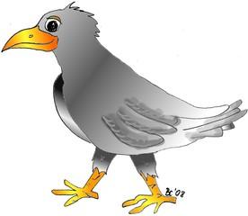 Rabe - Vogel, Tier, Märchen, Feder, schwarz, grau, Symbol, Sage, Illustration, Anlaut R, Anlaut V