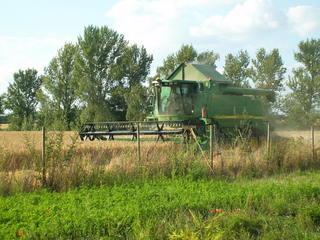 Mähdrescher #1 - Feld, Sommer, Getreide, Maschine, Mähdrescher, Feldarbeit, Bauer, Ernte, Stroh, Körner