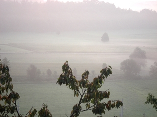 Nebelschleier - Morgen, Dunst, Nebel, Landschaft, Stimmung, Meditation, Ruhe, Stille, nachdenken, besinnen, genießen, Grauabstufung, Impulsbild