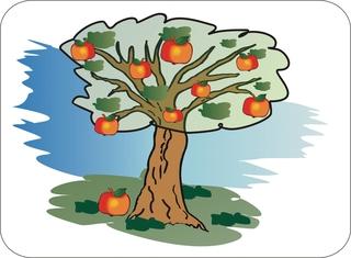 Sprichwörter - bildlich dargesteltt - Sprichwort, Redewendung, Umgangssprache, bildlich, Apfel, fallen, Baum