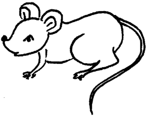Maus - Maus, Illustration, Anlaut M