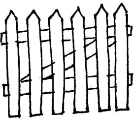 Zaun - Zaun, Latten, Lattenzaun, Abgrenzung, Anlaut Z