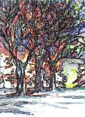 Bäume im Winter  - Bäume, Winter, kahl, kalt