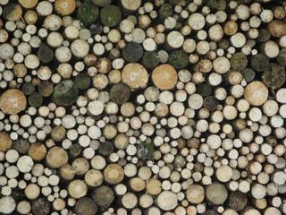 Holzstoß #2 - Holz, schlichten, geschlichtet, schichten, aufgerichtet, Struktur, Oberfläche, geordnet, Holzstoß, Baumstamm, Holznutzung, Forstwirtschaft, Wald, Feuerholz, Brennholz