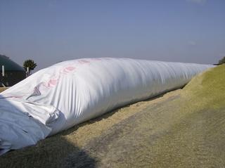 Biogasanlage #5 - Lagerung, Biomasse, Biogasanlage, Speicher