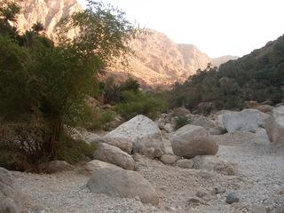Wadi im Oman - Wadi, trocken, Felsen, Dattelpalmen, Oman, Arabische Halbinsel, Trockental, Wüste, episodische Wasserführung