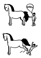 Pferderegeln, Regeln am Pferd - Regeln, Pferd, Sicherheit, Regel, Schreibanlass