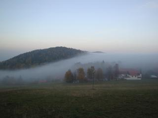 Nebel im Herbst #2 - Herbst, Nebel, Meteorologie, Wetter, Wettererscheinung, Wassertröpfchen, Kondensation, Taupunkt, Wasserdampf