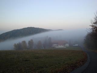 Nebel im Herbst #3 - Herbst, Nebel, Meteorologie, Wetter, Wettererscheinung, Wassertröpfchen, Kondensation, Taupunkt, Wasserdampf