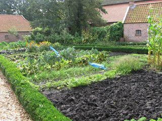 Bauerngarten #1 - Bauerngarten, Garten, Gartenbau, Gemüse, Kräuter, Blumen, Buchs, Hecke, Acker, Ackerbau, Bauernhof, Nutzpflanzen
