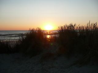 Ein Tag geht zu Ende #2 - Sonnenuntergang, Insel, Langeoog, Nordsee, Ostfriesland, Dünen, Strandhafer, Poster, Idylle, Schreibanlass, Abendrot, Sonne
