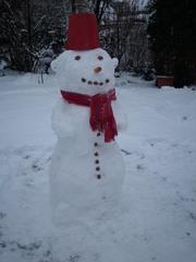 Schneemann - Winter, Schnee, kalt, Schneemann, bauen, Schneekugel, Schneefigur, Schal, Hut, Eimer, rot, Möhrennase, Winterfreuden, Figur