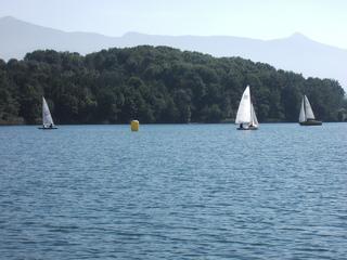 Segelregatta - See, Segelboot, Regatta, Wendeboje