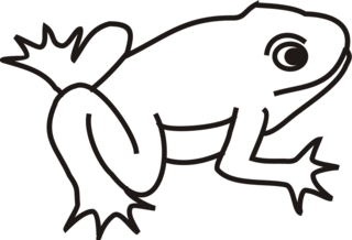 Frosch - Frosch, Kröte, Teich, schwimmen, Anlaut F, Wörter mit sch
