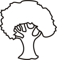 Baum - Baum, Bäume, Blatt, Blätter, Anlaut B, Wörter mit au